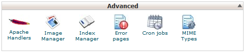 cPanel advanced cron